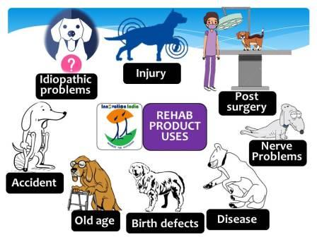 Conditions in which Innovation India pet dog veterinary rehabilitation products can be used and their special features